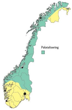 10_palatelisering_liten.jpg